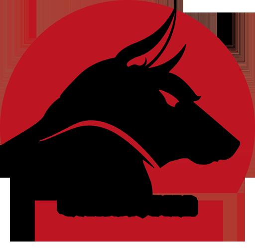 jandaghi Survival